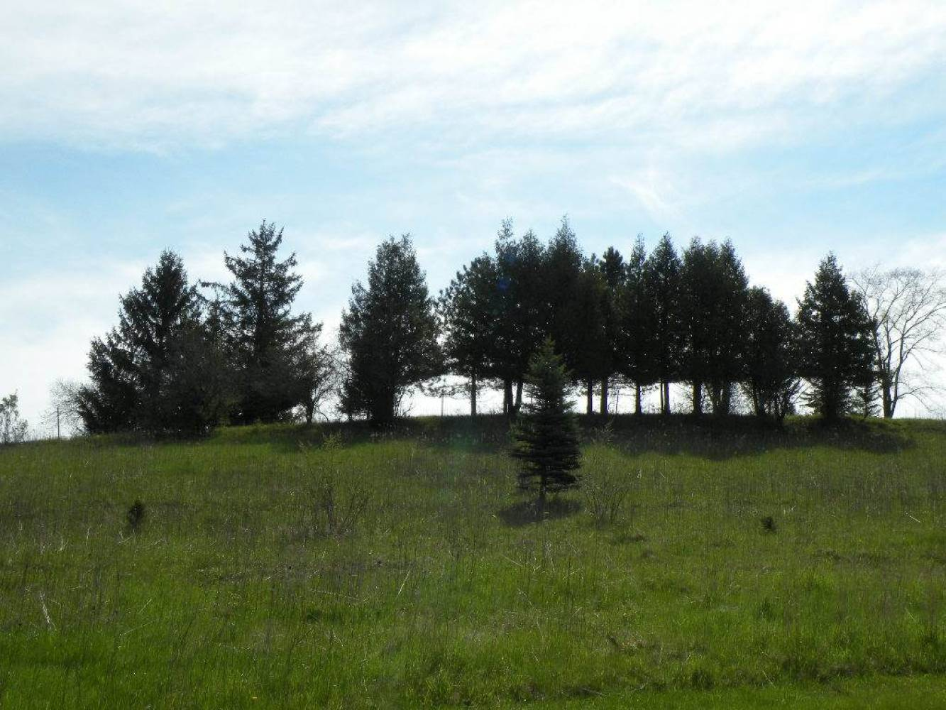 249 Stone Hill Ct, Wisconsin 54971, ,Lots & Acreage,For Sale,Stone Hill Ct,1802238